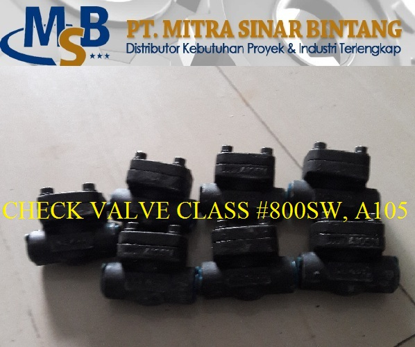 Check Valve Class #800 Carbon Steel A105