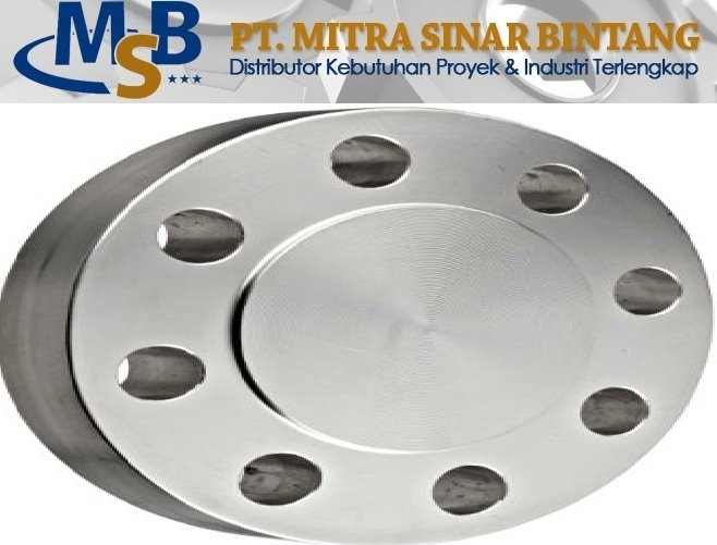 Blind Flange Class #300RF Stainless Steel SS316L