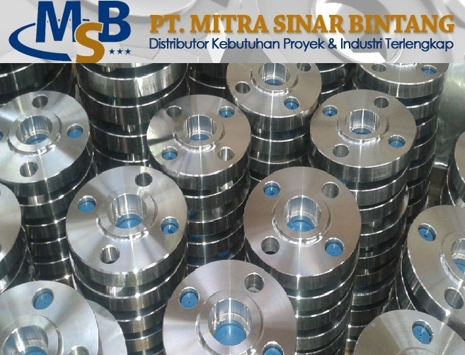 Flange Socket Welded Stainless Steel SS316L