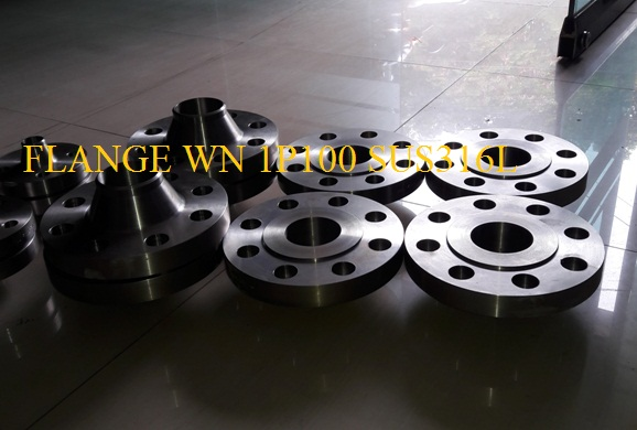 Flange WN PN100 Stainless Steel SUS316L