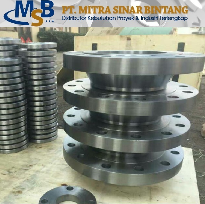 Flange WN Stainless Steel SS304L